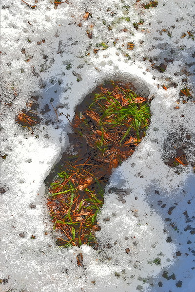 melting snow on the ground