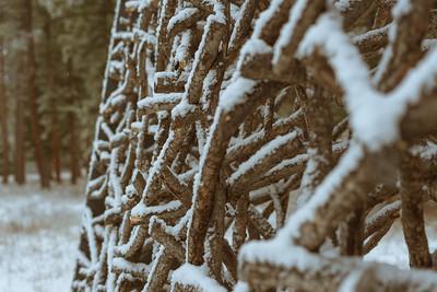 Blackfoot Pathways: Sculpture in the Wild