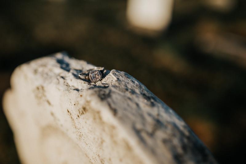 Auliya & Garrett Engagement-7695