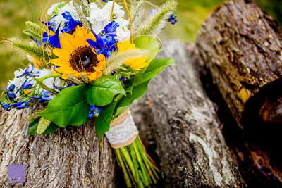 McCoy sunflower fall wedding