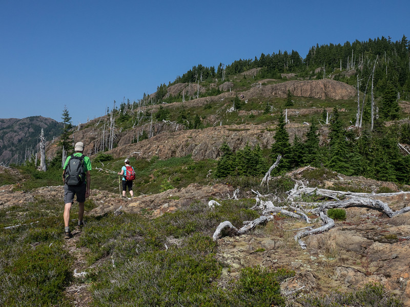 Following the faint trail up Mt. Curran