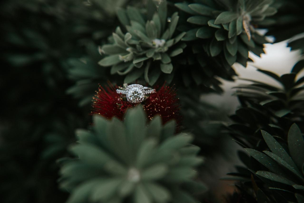 Erica & Gabe Wedding-0252
