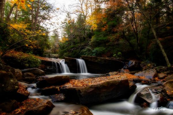Mountain stream in the fall