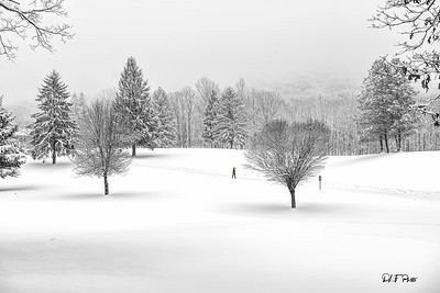 Walking in the snow on golf course