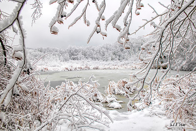 Frozen pond covered in white