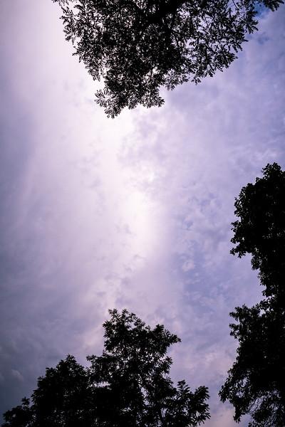Nebula - Revisting an old favorite - 2012