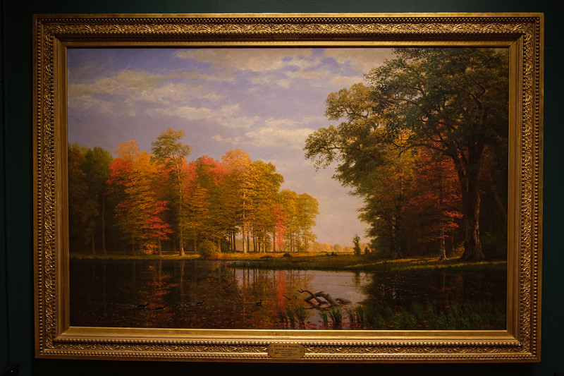 Albert Bierstadt's 'Autumn Woods'