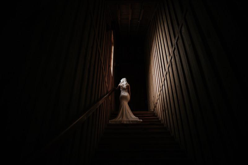 Taylor Elizabeth Photography - L-3460