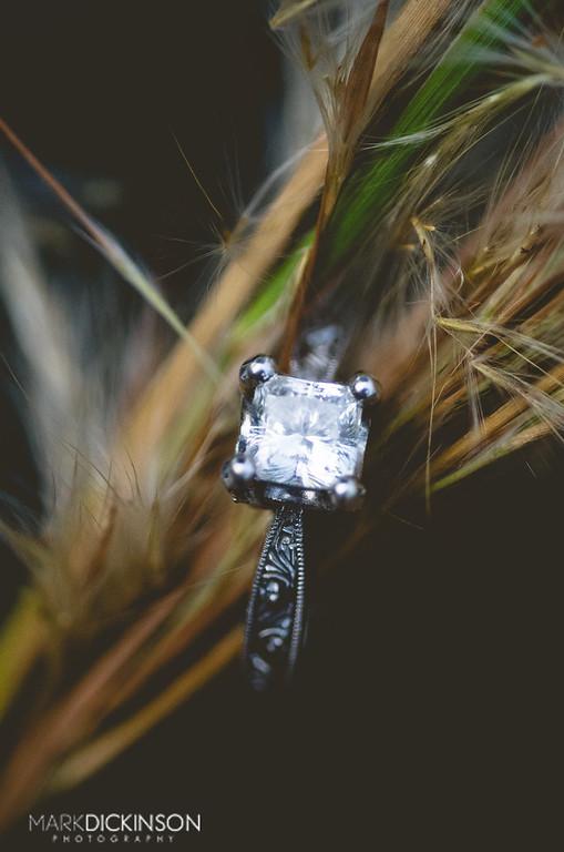 ring shot stacked image