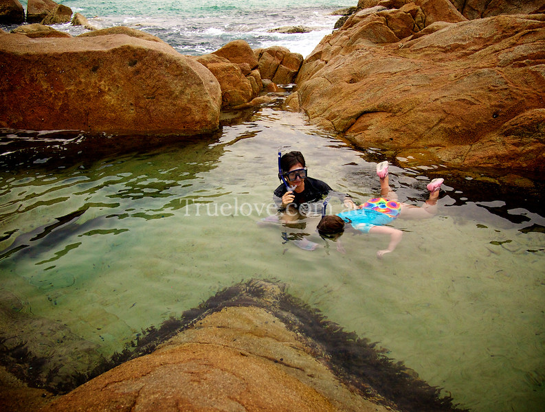 24.9.2013<br /> <br /> Australia is so beautiful. I took my kids on a road trip this school holidays to see the NSW North Coast, we camped rough at Hat Head National Park for some of it. Found a rock pool there and enjoyed teaching my daughter to snorkel.<br /> <br /> Photo by my mum.