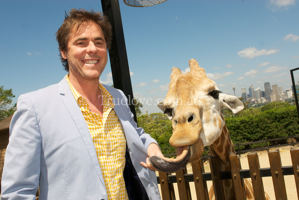 """31.10.2013<br /> <br /> They say never work with children and animals, what's the rule on celebrities and animals? Probably worse. Anyway, Tim Freedman kept his cool in the face of scene stealing giraffe antics, at Taronga Zoo to promote his concert with Twilight in Taronga.<br /> <br /> <a href=""""http://www.4di.com.au"""">http://www.4di.com.au</a><br /> <br /> © Tess Peni 2013"""