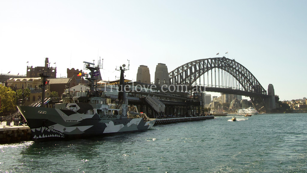 """1.09.2013<br /> <br /> Sea Shepherd Conservation Society's newest addition to their fleet -the animal activists were in Sydney Harbour to promote their cause and provide free public tours aboard the 'Sam Simon' on the weekend.<br /> <br /> They are well known for many international anti-poaching campaigns including blockading the Japanese whaling fleet in Antarctica. Sea Shepherd are preparing for their 10th year attempting to shut down the whalers they label  'poachers', who kill up to 1,000  protected and endangered whales each season in an international whale sanctuary, under the guise of 'research'.<br /> <br /> The Australian Government is currently awaiting a decision from the International Court of Justice to hand down their ruling regarding the legality of the Japanese 'research'.<br /> <br /> To check out more photos from Sydney, visit my Truelove Studios Facebook page:<br /> <a href=""""https://www.facebook.com/truelovestudios"""">https://www.facebook.com/truelovestudios</a><br /> <br /> © Tess Peni 2013"""