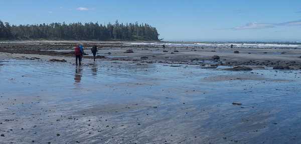 Tidal flats at low tide