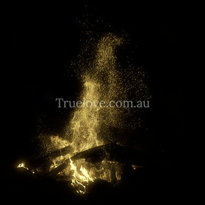 26.05.12 Sparks Gold  A huge bonfire keeps us warm in the autumn on a Wollembi (NSW) property as we celebrated a friend's 30th birthday in the bush. © Tess Peni  Olympus E-PL3 20mm f/1.7 1/250