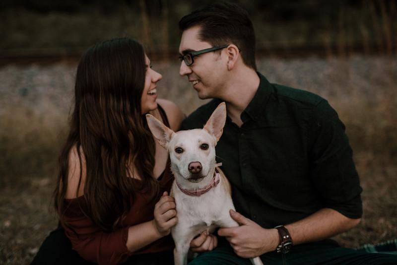 Rowan & Finn Engagement-9588