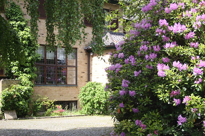 IMG_1622 Rhododendron in front of a lovely house in Charlottenlund, Denmark