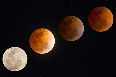 2014 Lunar Eclipse