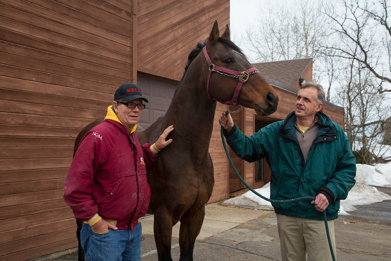 Stillwater, MN - Steve & Dorothy Erban of Premiere Stallions of Minnesota, owners of Kela, on their farm near the Twin Cities. Dr. Terry Arnesen, green jacket, works with Erbans on the breeding operations at Stillwater Equine Clinic  here today, Wednesday March 12, 2014.  Photo by © Todd Buchanan 2014 Technical Questions: todd@toddbuchanan.com