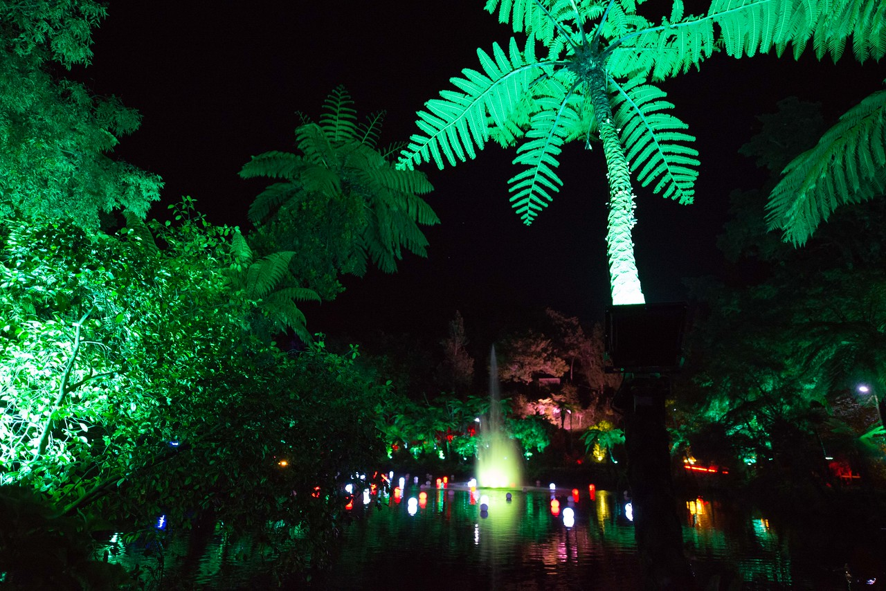 //i.stuff.co.nz/life-style/christmas/87546182/festival-of-lights-features-piece-made-up-of-1000-leds