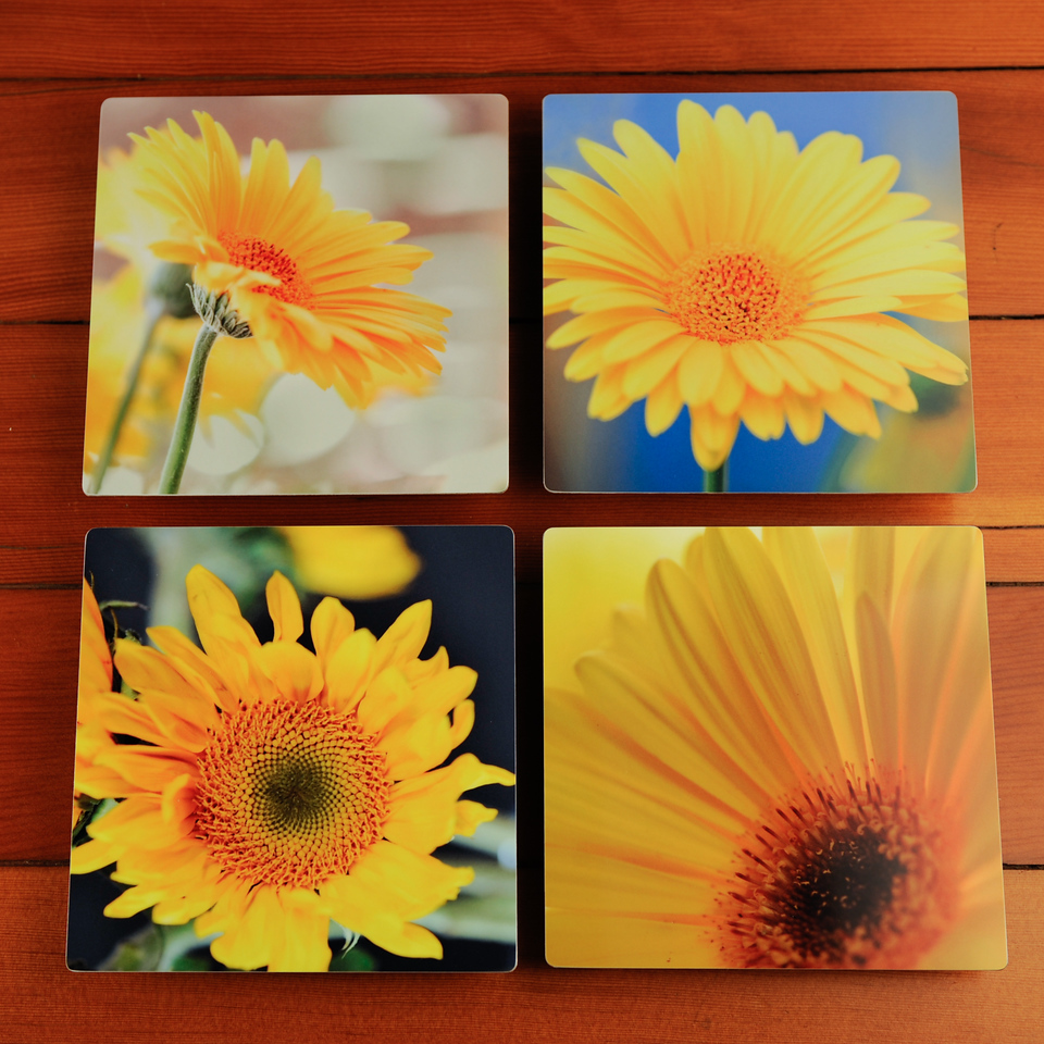 Metal Prints for sale on Etsy.  https://www.etsy.com/listing/230791849/yellow-flower-photography-prints-on?ref=shop_home_active_7