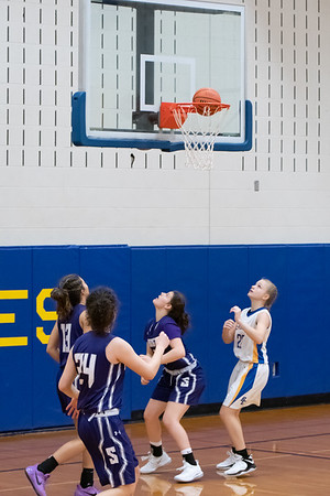 12-28-2018 Panthers v Brown County-0608