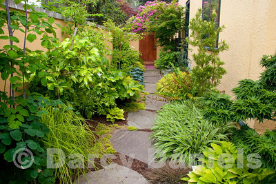Small private garden in NE Portland, Oregon. Garden designed by Darcy Daniels of Bloomtown Gardens. Landscape construction by Pete Wilson Stoneworks. Gates & trellis constructed by Patti Perkins.