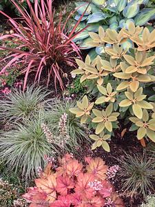 Planting Combination