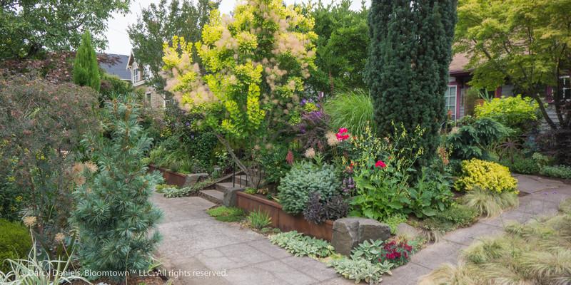 Bloomtown Frontyard Garden
