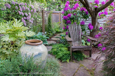 Darcy's Home Garden