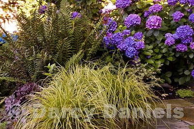 Design: Darcy Daniels, Bloomtown Gardens, www. bloomtown.net