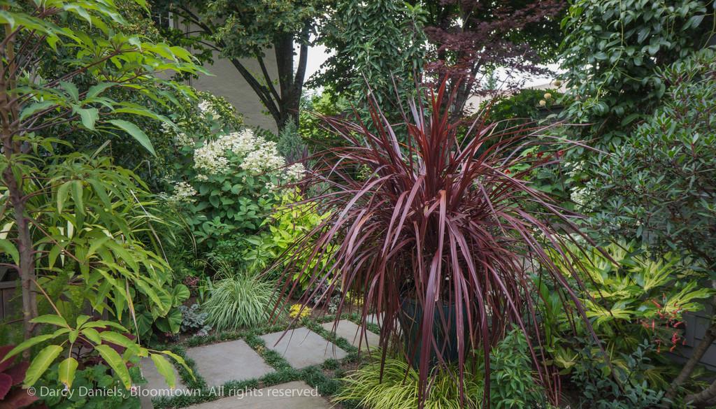 Bloomtown Back Garden