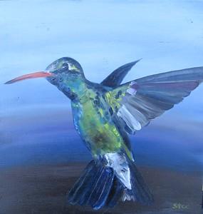 """HUMMINGBIRD"" (oil) by Shannon Celia"