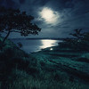 """Moonlight Sonata"" (photography) by Andrey Krovlin"