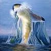 """Big white shark in the blue ocean"" (paint) by Vitaliy Maksimenko"