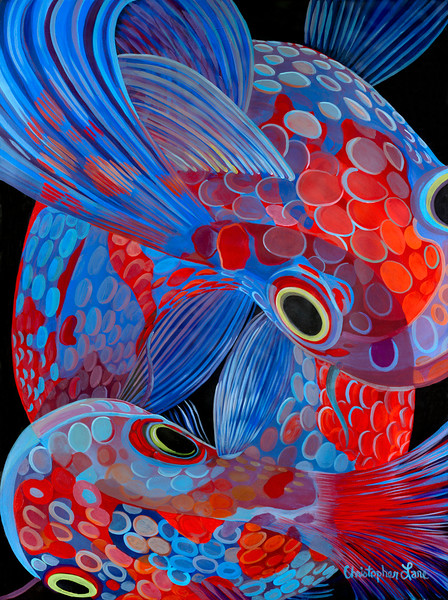 """""""Koi"""" (oil on canvas) by Christopher Lane"""