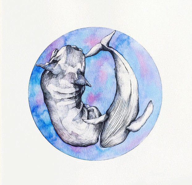 """Whale"" (watercolor) by Maria Stepanenko"