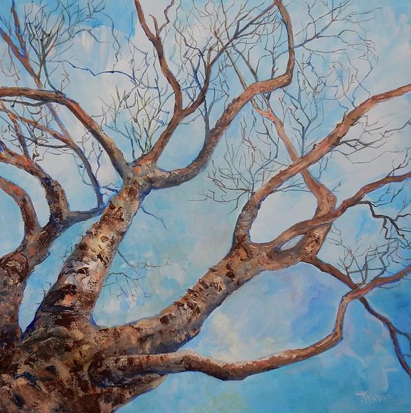 """""""Tree and Sky"""" (acrylic) by Joy Parks Coats"""