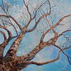 """Tree and Sky"" (acrylic) by Joy Parks Coats"