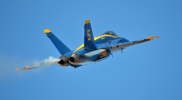 BLUE INTO THE WILD BLUE YONDER