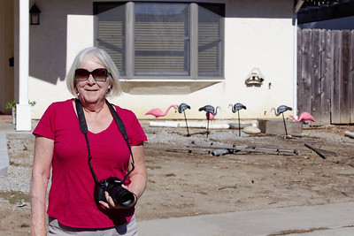 Karen with the lawn flamingos in the background.  One by one, they've been mysteriously turning grey.  :-)