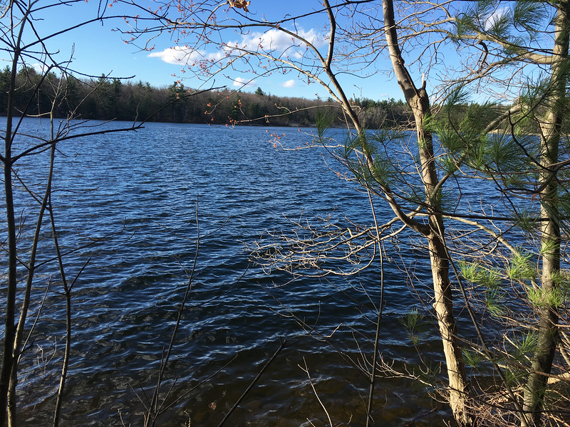 A gentle wind rippled the surface of the Mill Pond Reservoir on a recent April afternoon. Photo by Mary Leach