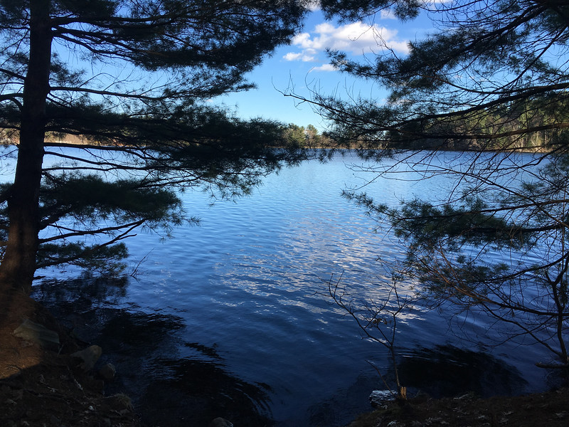 Brilliant blue water provided a slight reflection of clouds at the Mill Pond Conservation Area. Photo by Mary Leach