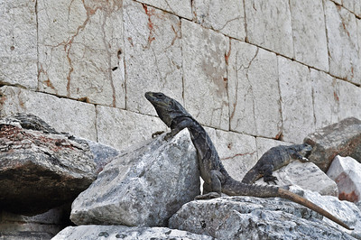 The Guardians of Uxmal