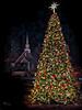 A Blue Ridge Christmas (1 of 1)