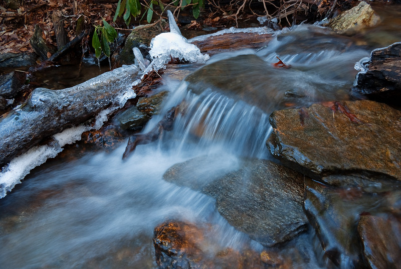 "<p></p><div id=""centered_description"">Close Up Below Moore Cove Falls, Pisgah National Forest</div>"