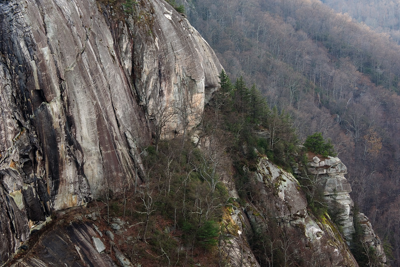 "<p></p><div id=""centered_description"">View from Exclamation Point, Chimney Rock State Park </div>"