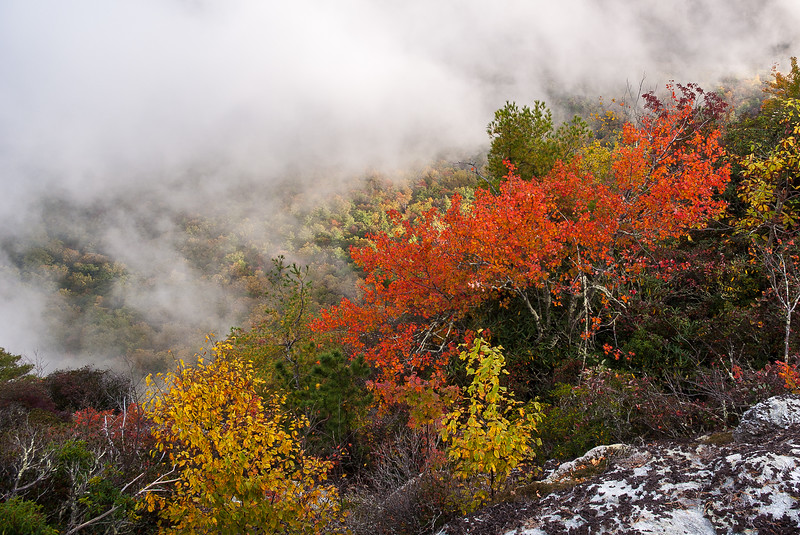 Fall Foliage from Table Rock Mountain