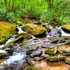 Goshen Creek Spring