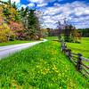Parkway Spring