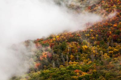 Fall color at Grandfather Mountain. Storm clouds were blowing in and out. One minute visibility was just a few feet in front of you and a few minutes later the clouds would blow away to reveal the color on the mountain. It's a beautiful site. This image was taken from Rough Ridge.